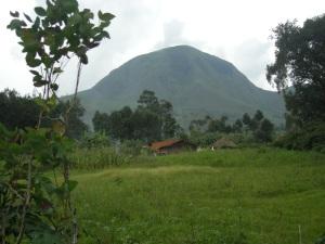 Monte Nidunga