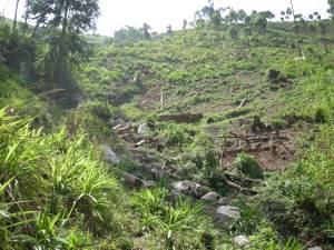 Realizzazione acqua a Kimbulu Butembo 017