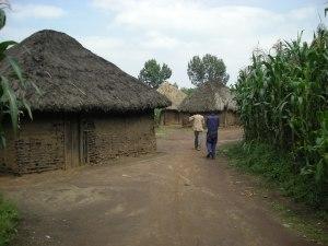 Realizzazione acqua a Kimbulu Butembo 021